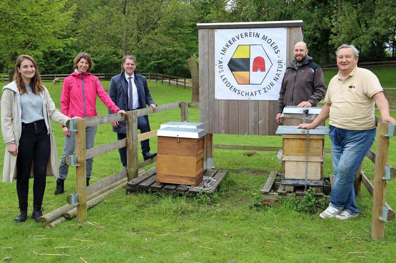 Zusätzliche Bienenstöcke für den Freizeitpark